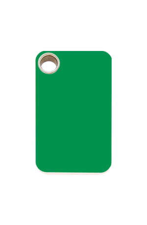 Green Rectangle Plastic Pet Tag
