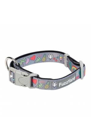 FuzzYard Coachella Dog Collar