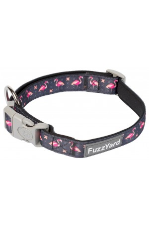 FuzzYard Fabmingo Dog Collar